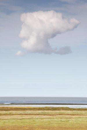 Kwelders met wolk aan de Groningse waddenkust bij de Linthorst-Homan polder.