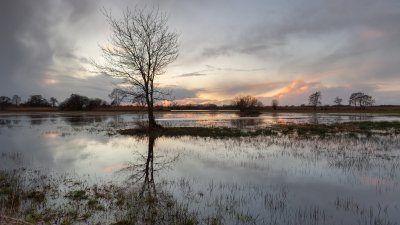 Zonsondergang over ondergelopen land in de Wieden in de kop van Overijssel.