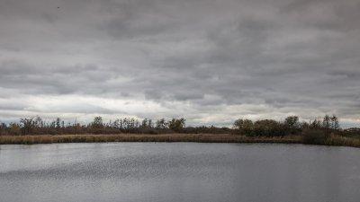 Plas in de Wieden bij Giethoorn in de kop van Overijssel.