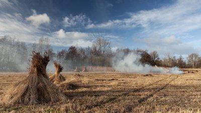 Afval wordt verbrand na de rietoogst in de Wieden in de kop van Overijssel.
