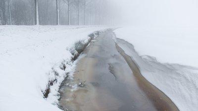 Landschap met sneeuw  en ijs op de sloot en eer ij populieren bij Meppel.