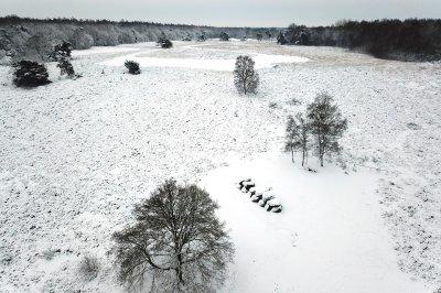 Sneeuw landschap met hunebed bij Havelte in Drenthe.
