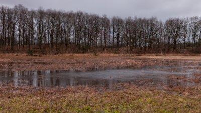 Regenbui boven het Holtingerveld bij Havelte in Drenthe.