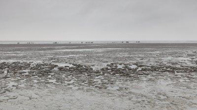 Laagwater op het Wad bij Paesens-Moddergat in het Noorden van friesland.