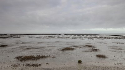 Laagwater op het Uithuizerwad in Noord-Groningen.