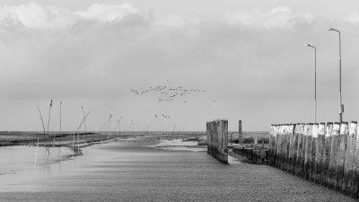 Laagwater in de haven van Noordpolderzijl aan de Waddenzee in Noord-Groningen.