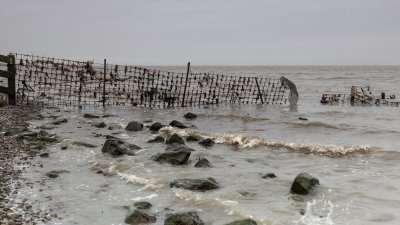 Stuk gaas in de Waddenzee bij Wierum in Friesland.