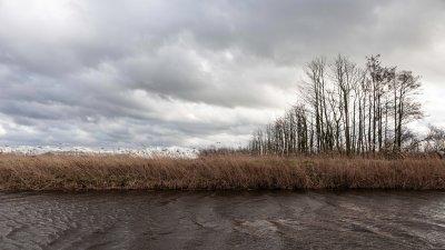 Een stevige wind waait over de Wieden in de Kop van Overijssel.
