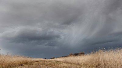 Wegtrekkende bui boevn de rietlanden van de Wieden in de kop van Overijssel.