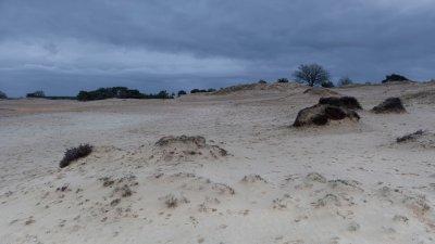 Zandverstuiving de Kale Duinen in het Drents Friese Wold bij Appelscha.