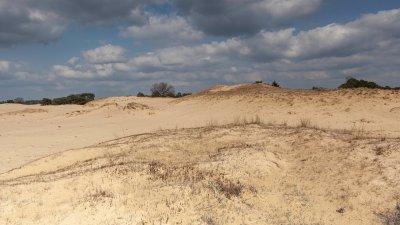 Het Aekingerzand, vanwege dit landschap ook wel de Kale duinen genoemd, bij appelscha.