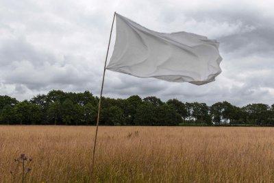 Wapperende witte vlag in zomerweide in het Reestdal.