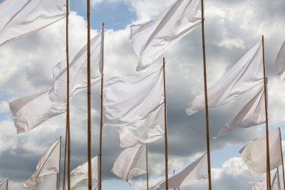 """""""Overgave"""", installatie van witte vlaggen op kunstexpeditie Dwingelderveld."""