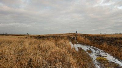 Herfst op de Rheder en Worthrhederheide in Nationaal Park de Veluwezoom.