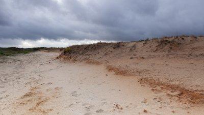 Regenwolken boven zandverstuiving de Pollen op de Hoge Veluwe.
