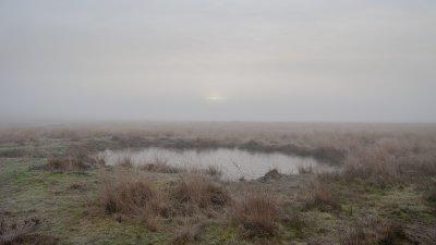 Vennetje op de Terletse heide op een nevelige ochtend in de winter.