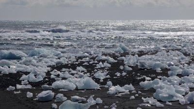 IJsblokken op het zwarte zandstrand bij Jökulsárlón in Zuid-IJsland