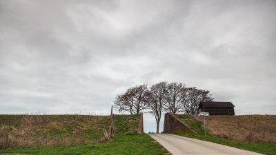 Dijk tussen Kroonpolder en Reiderwolderpolder in het Oldambt in Groningen.