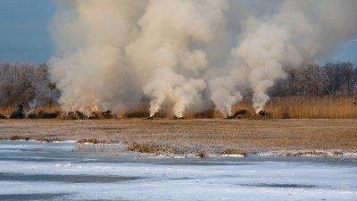 Rietsnijder verbrandt afval na de oogst in de Wieden in de kop van Overijssel.
